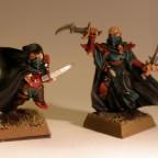 Dunkelelfen Assassinen