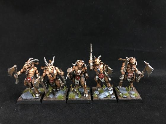 5 Gor für die Herde