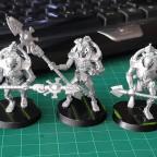 Die Gruppe Necrons ist fertig für die Details :-)