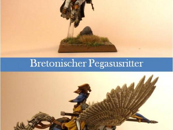 Bretonischer Pegasusritter 1