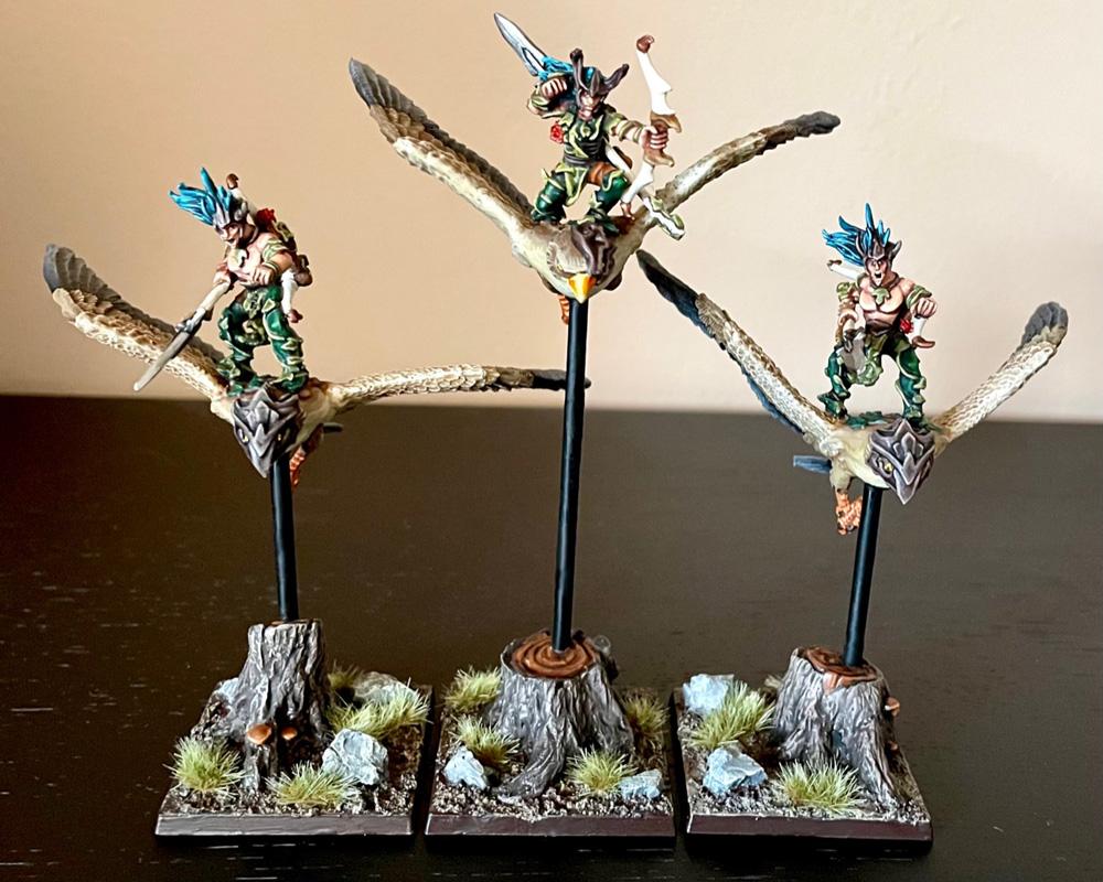 Warhawk Riders