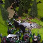 Zug 4 - Elfen
