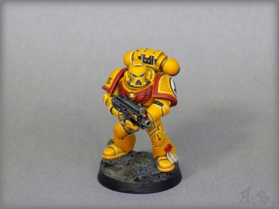 """Imperial Fists"""